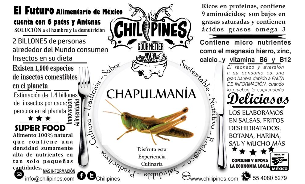 productos_varios_chili